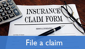 file-a-claim